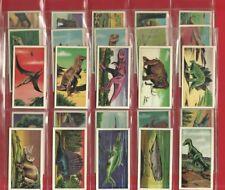 PREHISTORIC ANIMALS  - 1964 TRADE CARD SET - MILK MARKETING BOARD  (LG06)