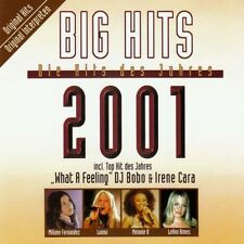 Big Hits 2001 Various und Loona