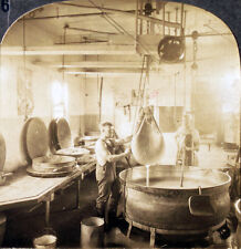 Keystone Stereoview Draining Cheese Curd, East Aurora, NY from Education Set # A