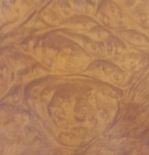 "Madrone Burl wood veneer 8"" x 17"" raw veneer no backing 1/42"" thickness ""A"""