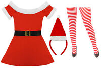 MISS SANTA COSTUME PLUS HAT AND TIGHTS LADIES FATHER CHRISTMAS FANCY DRESS