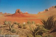 """Vivarium / Aquarium Reptile Desert  Background 19"""" Tall x 8ft wide"""