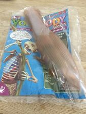 How Your Body Works Billy Bones Issue 55 Brand New Sealed