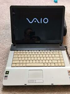 Rare Limited Edition Sony Vaio Laptop PCG-7ADP, Windows XP