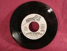 A Foot In Coldwater, (Make Me Do) Anything You Want, 1974 Elektra E-45224 Promo