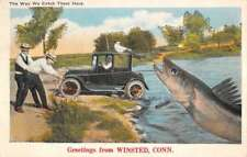 Winsted Connecticut Large Fish Catch Early Auto Antique Postcard K100156