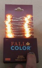 Fall Color 25 Orange Mini LED Lights Pumpkins Battery Operated 9 Ft Indoor 138Q