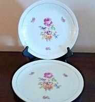 Coditz Porzellan Germany Rose Floral Dinner Plates x2 Ribbed Rim Gold Trim/Verge