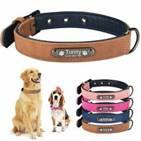Soft Velet Personalised Dog Collar Leather Padded for Small Medium Large Pet Pup