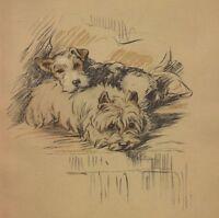 West Highland Terrier - Lucy Dawson Dog Art Print - MATTED