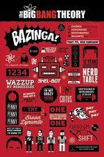 THE BIG BANG THEORY ~ GENERAL INFO 24x36 TV POSTER Jim Parsons Bazinga Coitus