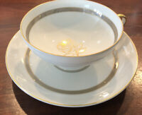 Rosenthal Rosenthal Rose Bavaria-Germany Cup And Saucer. Immaculate!!