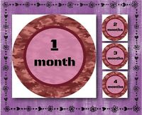 """Pink Camouflage - Baby Milestone Stickers Months 1-12 - 2.5"""" Round Glossy Labels"""