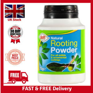 Doff Natural Hormone Rooting Powder 75g for Strong Healthy Plants Outdoor