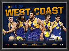 West Coast Eagles Sons of the AFL Official Licensed Limited Edition Print Framed