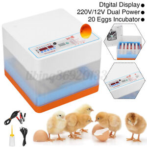 Automatic 20-Egg Incubator Hatching LED Egg Candling Chickens Ducks Pigeon