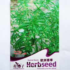 Original Packaging 50 Seeds Summer Savory Seed Grass Aromatic Plants D034