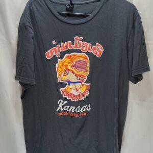 Vintage Kansas rock band t shirt  size XL