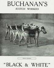 WWI Welsh Terrier Fusiliers Maud Earl Black & White Whisky 1915 Advertisement Ad