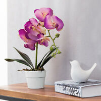 MyGift Artificial Pink Silk Phalaenopsis Orchid Flower with White Ceramic Pot