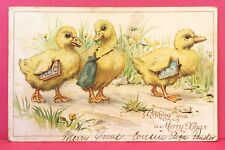 Postcard 1904 Merry Christmas Xmas Baby Ducks Going to School Ducklings A9