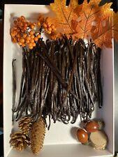 10pc Gormet Bourbon Grade AA Madagascar Vanilla Beans, 5-7inches,  PLUMPY