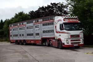 Truck Photos Irish Livestock Trucks Mc Creery, TLT, Treanor, McCurdy Jnr etc