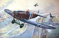 Roden 1/48 Junkers D.I #434