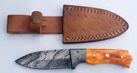 Custom Handmade Damascus Steel Knife Coloured Bone Handle Full Tang with sheath