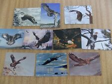 Swap playing cards   10 Modern Wides    Eagle Birds