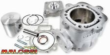 Running cylinder MALOSSI 172ccm for GILERA RUNNER PIAGGIO HEXAGON 125-180ccm 2T
