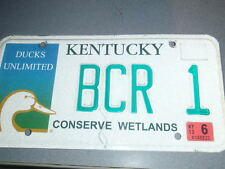 Kentucky Ducks Unlimited 2013 License Plate #BCR 1 Custom Low Number