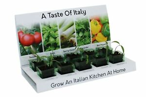 Italian Herbs & Vegetables Grow Your Own kit, 5 Varieties to Grow from Seed