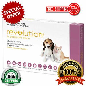 Revolution Parasite Prevention for Puppy Dog, Kitten & Rabbit Pack of 3 Doses
