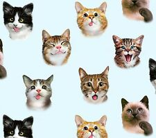PET SELFIES CATS & KITTENS FABRIC COTTON MATERIAL, From Elizabeths Studio NEW