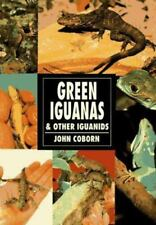 Green Iguanas and Other Iguanids by John Coborn (1995, Paperback)