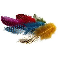 Guinea Fowl Feathers Craft  Hat Decoration Approx.100 Pieces Assorted Colours 3g