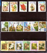 LAOS Les fleurs: insectivores,orchidées et ornements    H252