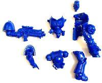 know no fear Warhammer 40K Primaris Space Marine primaris intercessor sergent