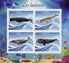 Benin 2015 MNH Whales 4v M/S Baleines Narwhal Marine Mammals Animals Stamps