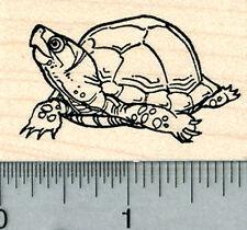 Turtle Rubber Stamp, Tortoise E31017 WM