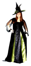Goth Maiden Witch Halloween Costume Plus Size 16 to 24 W Black Color Women Adult