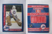 2015 SCA Brian Hayward Winnipeg Jets goalie never issued produced #d/10