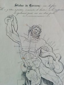 NEOCLASSICIST/ ACADEMIC study book for HUMAN ANATOMY / MALE NUDES / GRAND TOUR