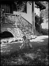 Jeune enfant bébé nourrisson jardin jouet chien - Ancien négatif photo an. 1930