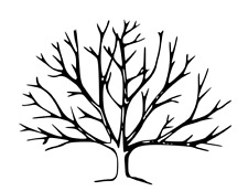 Bare Winter Tree unmounted rubber stamp, nature, Autumn, Fall, Halloween #24