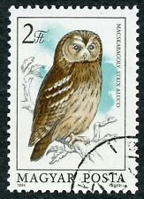 Birds. Tawny Owl (Strix aluco) 1984 Hungary, Scott #2889. Free WW S/H