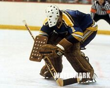 NHL St. Louis Blues Goalie Mike Liut Game Action Color Picture 8 X 10 Photo Pic
