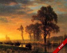 SUNSET IN WESTERN KANSAS BUFFALO LANDSCAPE OIL PAINTING ART PRINT ON REAL CANVAS