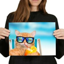 A4 - Funny Ginger Cat Sunbathing Poster 29.7X21cm280gsm #14582